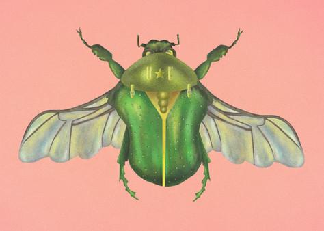 u.e beetle