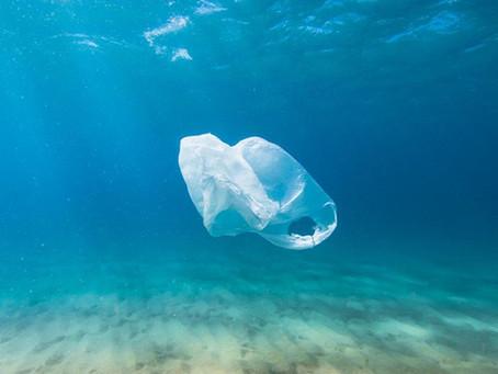 L'interdiction de produits plastiques à usage unique