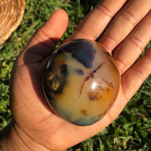 Dendritic Agate Palm Stone