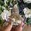 Thumbnail: Amethyst Spirit Quartz