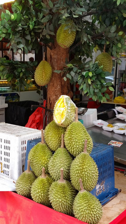 Durian (3Mar2016)