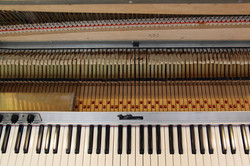 The Action and Keybed under the harp