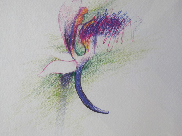 Abstra'Fleurs
