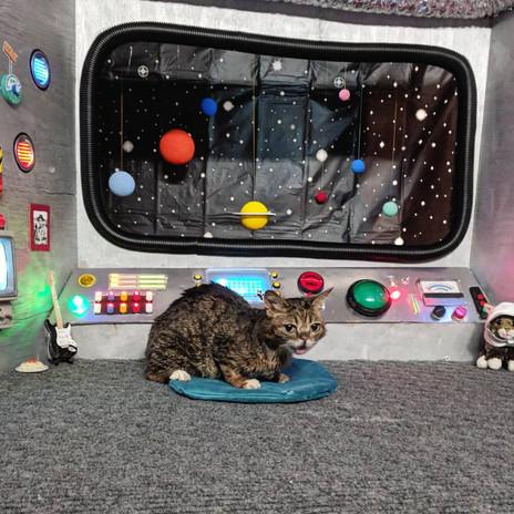 Bub Spaceship