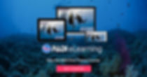 eLearning_DiveTheory_divers_bnrs1200x627