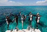 Five Scuba Divers Jumping In the Water