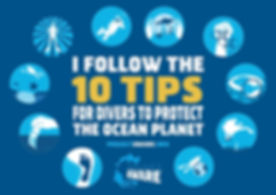 10 Tips Diver Pledge_0 copy.jpg