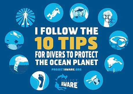 10 Tips Diver Pledge_0 copy.jpg