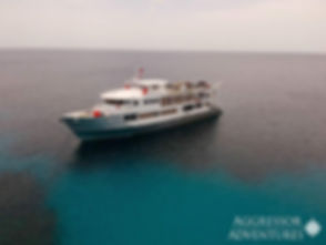 ShipCA.jpg