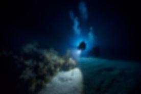 PADI Night Diver.jpg