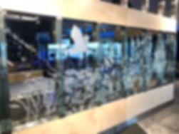 Fisharium Glass Detail.jpeg