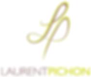 Laurent Pichon thérapeute en soin Energétique, géobiologue en indre et Loire, tours,, touraine 37, radiesthésiste