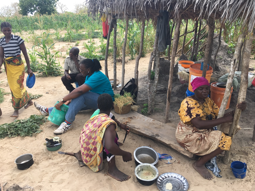 Visits to farm camps by NEPSUS researchers in Ngarambe village, August 2017