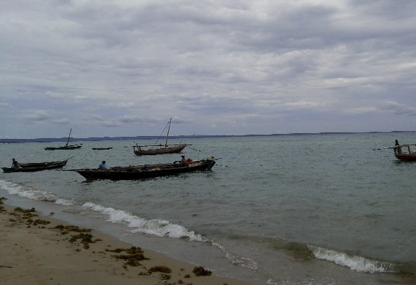 Incomplete local community participation in the management of coastal resources: The Mtwara case