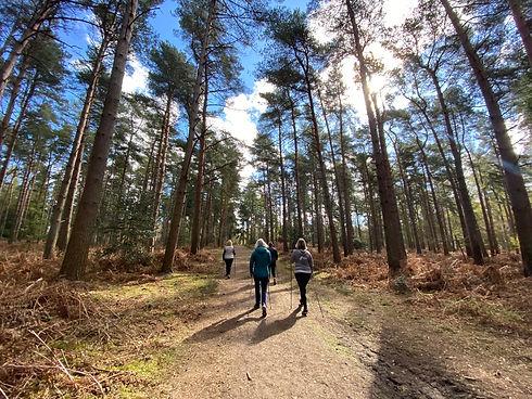 Nordic Walking Main 1.jpg