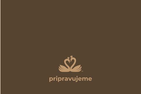 služby tantra sávitryí pripravujeme.png