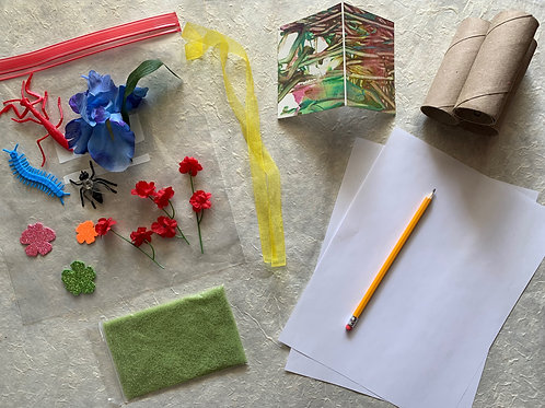 Activity Kit for Insect Week
