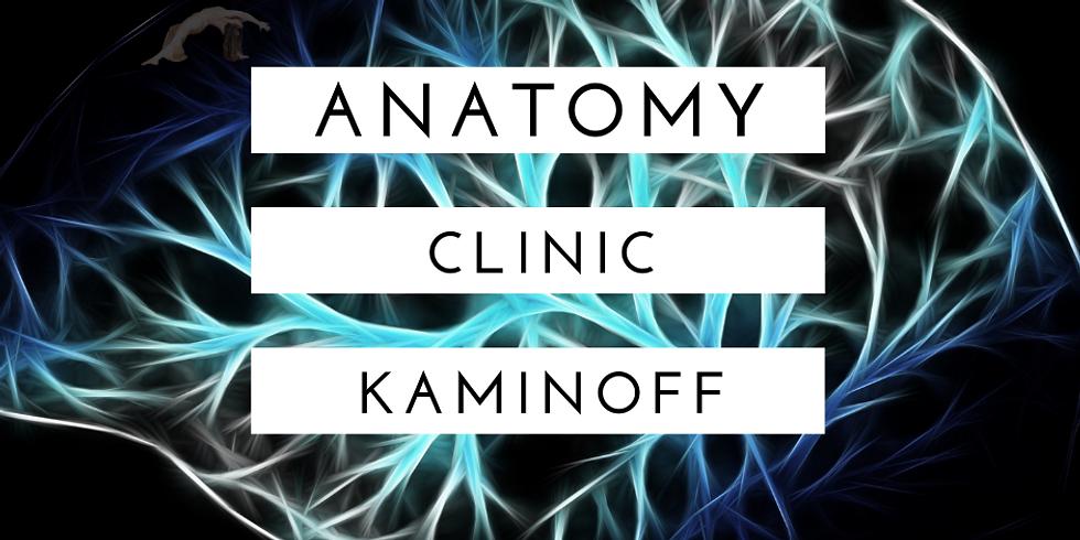Anatomy Clinic Tuition