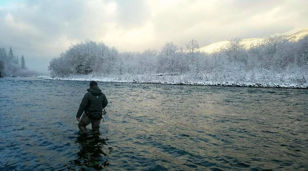 swinging olympic peninsula river for steelhead