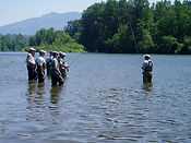 fly fishing classes and trips