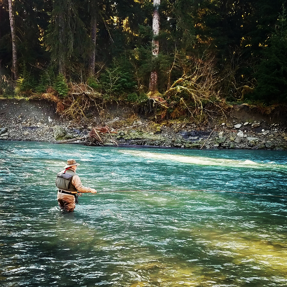 steelhead guide trips olympic peninsula