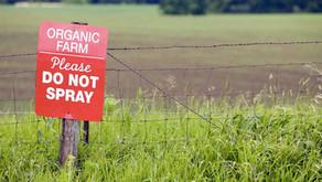 Organic and Biodynamic Produce in Australia - a Growing Consumer Demand 🍇