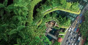 We Need Greener Cities NOW 🎥