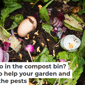 Guest Blog - Composting Food-Scraps The Right Way: Some Tips To Help Your Garden And Keep Pests Away