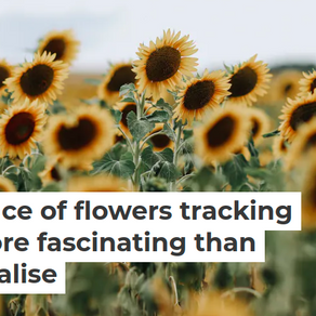 Did you know: The Fascinating Daily Dance of Flowers