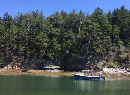 Sisu 22 explores Maines offshore Islands.