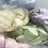 Thumbnail: The NOVA Headband - Lime
