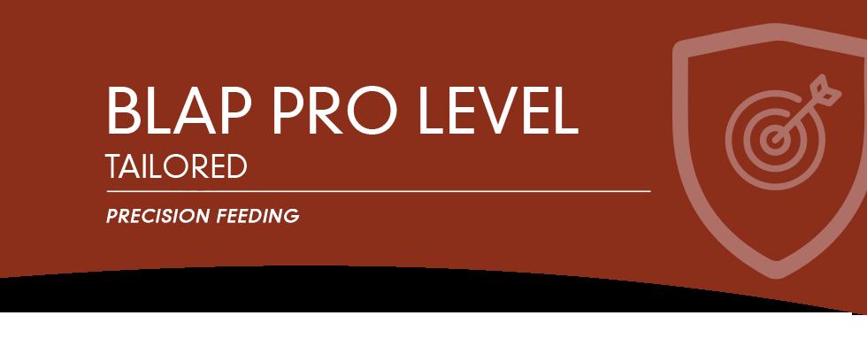 BLAP-PRO-LEVEL980x400.png