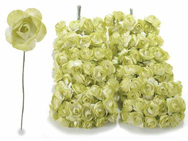 Light Green Roses