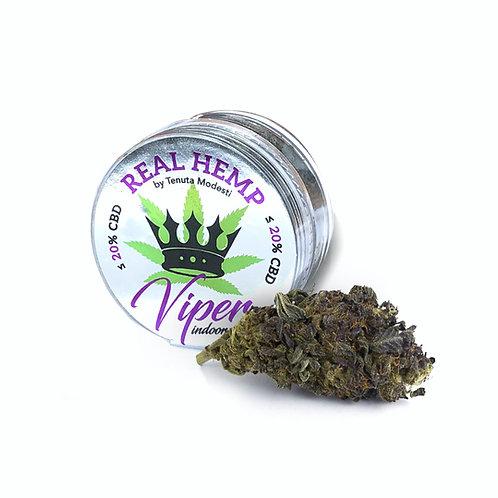 REAL HEMP VIPER Indoor - Infiorescenze Purple - 1g • CBD 20%