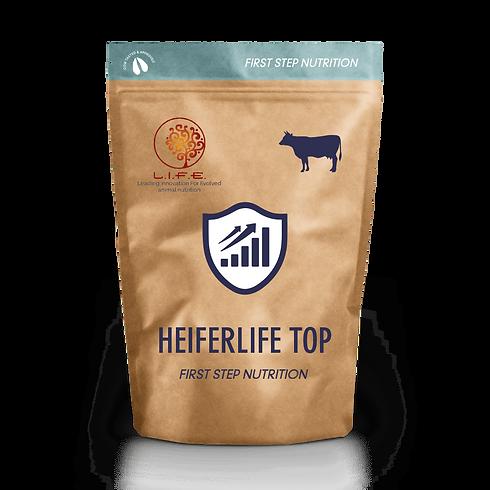 heiferlife-top-min.png
