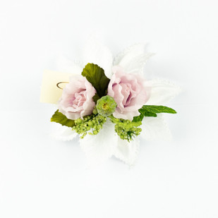 Ischia in white