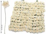 Ivory Roses
