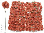 Light Red Roses