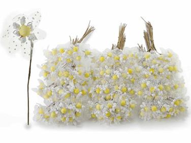 White Chamomile