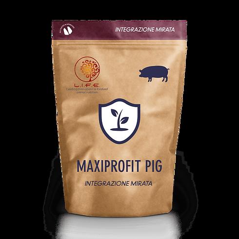 maxi-profit-min.png