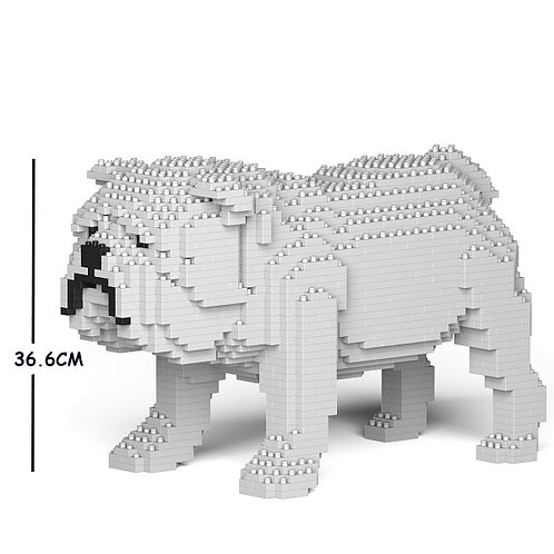 英國老虎狗 English Bulldog 01C-M02 M size (需訂貨)