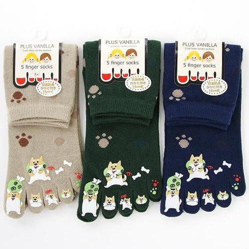 D02534 Plus Vanilla柴犬5指襪