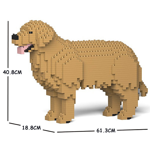 金毛尋回犬 Golden Retriever 01C-M04 M size (需訂貨)