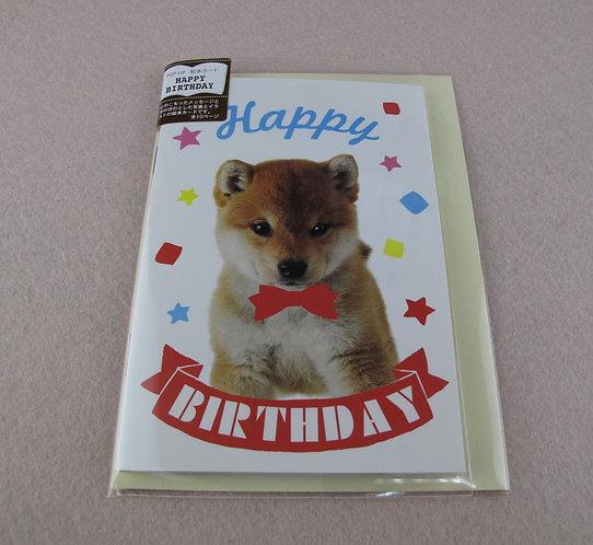 D01426 柴犬生日咭