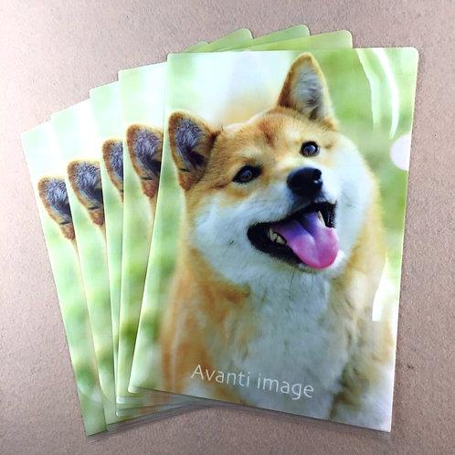 D01403 柴犬A4 文件套 (一套五個)
