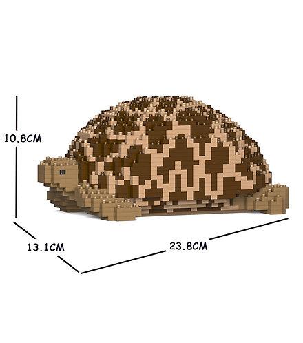 Jekca 印度星龜 Indian Star Tortoise 01S (需訂貨)