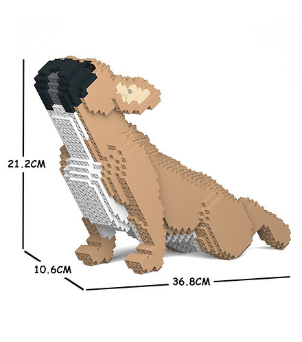 Jekca 法國老虎狗 French Bulldog 05S-M01 S size (需訂貨)