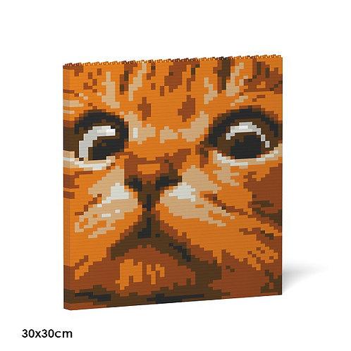 Cat Eyes Brick Painting 02S-M01  (需訂貨)