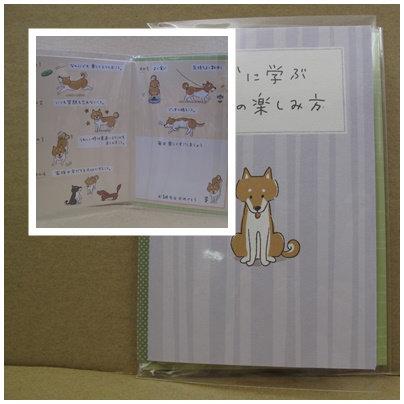 D00538 柴犬生日咭