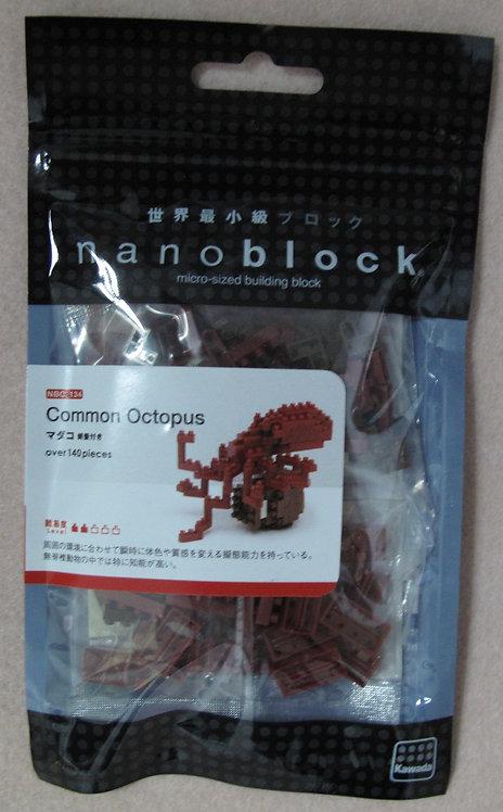 NBC_134 Common Octopus